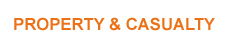 Property & Casualty Insurance
