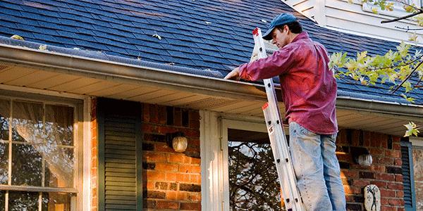 Outdoor Spring Maintenance Tips